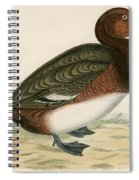 Ferruginous Duck Spiral Notebook