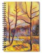 Ferrum Sketch Spiral Notebook