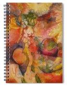 Fertility Spiral Notebook