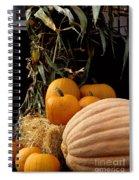 Festive Fall Spiral Notebook