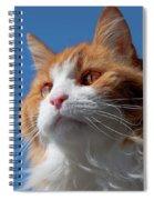 Festus... Spiral Notebook