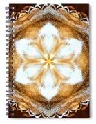 Fiber Optic Gold Spiral Notebook