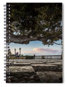 Ficus Magnonioide In The Alameda De Apodaca Cadiz Spain Spiral Notebook
