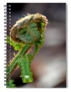 Fiddlehead 2 Spiral Notebook