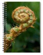 Fiddlehead Spiral Notebook