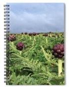Field Of Artichokes Spiral Notebook