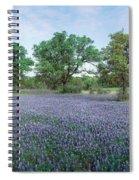 Field Of Bluebonnet Flowers, Texas, Usa Spiral Notebook