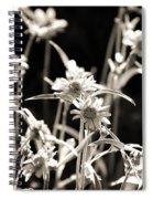 Field Of Daisies Spiral Notebook