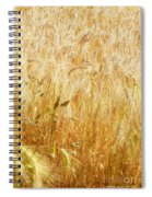 Field Of Gold 1 Spiral Notebook