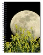 Field Of Gold By Moonlight Spiral Notebook