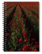 Field Of Poppies Spiral Notebook
