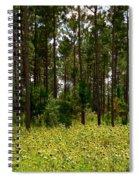 Field Of Sunflowers Spiral Notebook