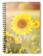 Field Of Sunshine Spiral Notebook