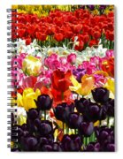 Field Of Tulips Ll Spiral Notebook