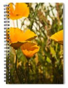 Field Of Yellow Poppies Spiral Notebook