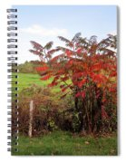 Field With Sumac In Autumn Spiral Notebook