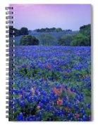 Fields Of Blue Spiral Notebook