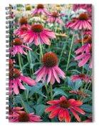 Fields Of Coneflower Spiral Notebook
