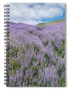 Fields Of Lupine 3 Spiral Notebook
