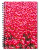Fields Of Tulips Alkmaar Vicinity Spiral Notebook