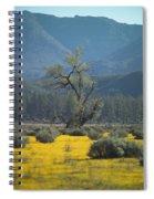 Fields Of Yellow Foxglove Spiral Notebook