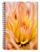 Fiery Dahlia Spiral Notebook