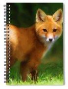 Fiery Fox Spiral Notebook