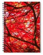 Fiery Maple Veins Spiral Notebook