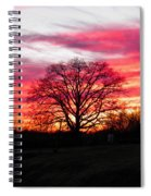 Fiery Oak 2 Spiral Notebook