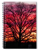 Fiery Oak Spiral Notebook