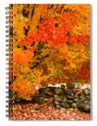 Fiery Rock Wall Spiral Notebook