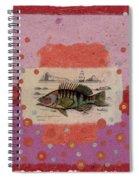Fiesta Fish Collage Spiral Notebook