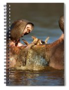 Fighting Hippo's Spiral Notebook