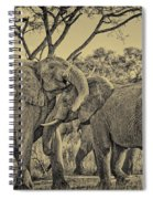 fighting male African elephants Spiral Notebook