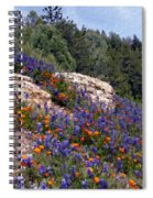 Figueroa Mountain Splendor Spiral Notebook