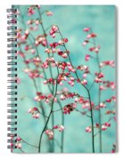 Filigran Spiral Notebook