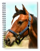 Filly Spiral Notebook