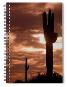Film Homage Orson Welles Saguaro Cacti The Other Side Of The Wind Carefree Arizona 2004 Spiral Notebook