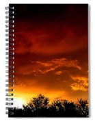 Film Noir Errol Morris The Dark Wind 1991 Casa Grande Arizona 2004 Spiral Notebook