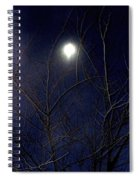 Film Noir Joseph H Lewis So Dark The Night 1946 Moon Trees Casa Grande Arizona 2000 Spiral Notebook