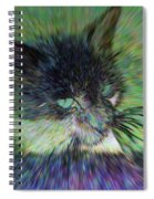 Filtered Cat Spiral Notebook