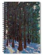 Filtered Light Spiral Notebook