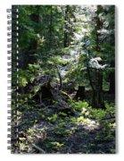 Filtered Sunlight Peace Spiral Notebook