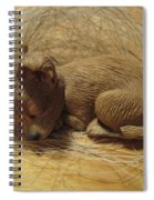 Finding Your Forever Home Spiral Notebook