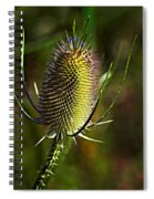Finis Spiral Notebook
