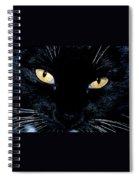 Fiona The Tuxedo Cat Spiral Notebook