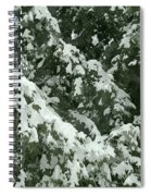 Fir Tree Branch Covered With Snow  Spiral Notebook