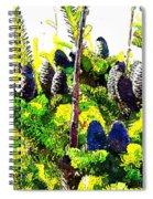 Fir Tree Buds Abstract Spiral Notebook