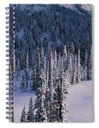 Fir Trees, Mount Rainier National Park Spiral Notebook