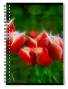 Fire And Ice Fractal Triptych Spiral Notebook